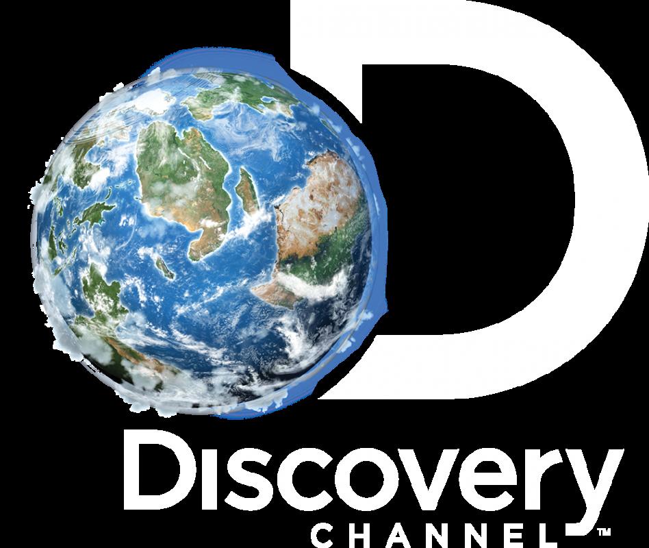 discovery logo alb