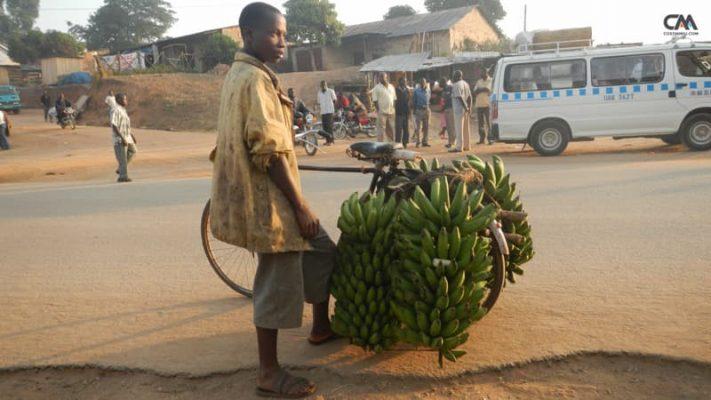 vânzător de banane în uganda, rwenzori mt.